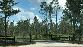 Sharon Tract - Lot 1 - Nassau County, Florida