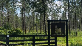 Sharon Tract - Lot 2 - Nassau County, Florida