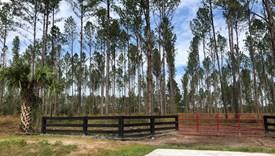 Crossroads - Parcel 2 - Nassau County, Florida