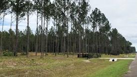 Crossroads - Parcel 7 - Nassau County, Florida