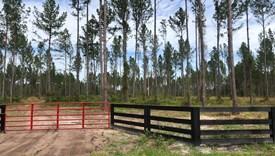 Crossroads - Parcel 4 - Nassau County, Florida