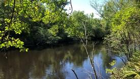 The Refuge - Lot 1 - Charlton County, Georgia