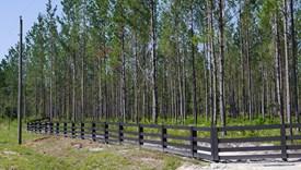 Cashen Farms - Parcel 4 - Nassau County, Florida