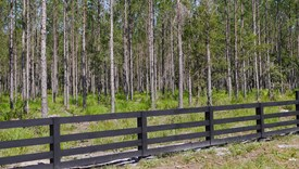 Cashen Farms - Parcel 2 - Nassau County, Florida