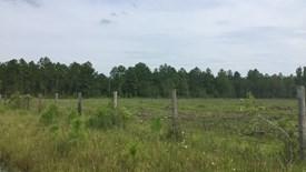 Cobb Creek Parcel 1 - Baker County, Florida