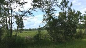 Cobb Creek Parcel 4 - Baker County, Florida