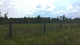 Cobb Creek Parcel 7 - Baker County, Florida