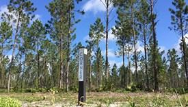 Hampton Mills Parcel 1 - Nassau County, Florida
