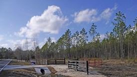 Mills Corner - Parcel 2 - Nassau County, Florida