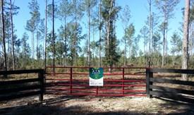 Suwannee Retreats Lot 1 - Suwannee County, Florida