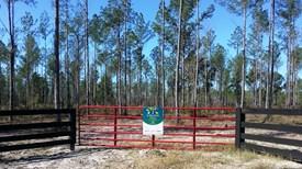 Suwannee Retreats Lot 2 - Suwannee County, Florida