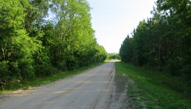 Tall Pines Parcel 16 - Bradford County, Florida