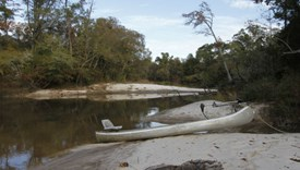 River Bend Lot 10 - Allen Parish, Louisiana