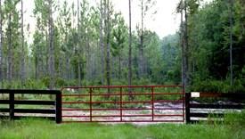 Simmons Trails - Nassau County, Florida