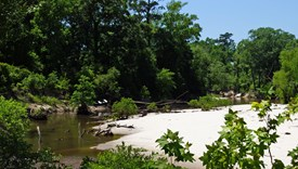 River Bend Lot 11 - Allen Parish, Louisiana