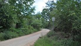 Livingston South - Parcel 3 - Polk County, Texas