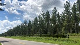 Heartwood Farms - Lot 1 - Nassau County, Florida
