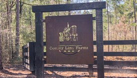 County Line Farms - Lot 8 - Polk County, Texas