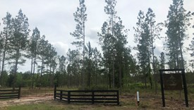 Section 39 - Lot 2 - Nassau County, Florida